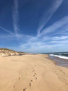 Marthas Vineyard Beach